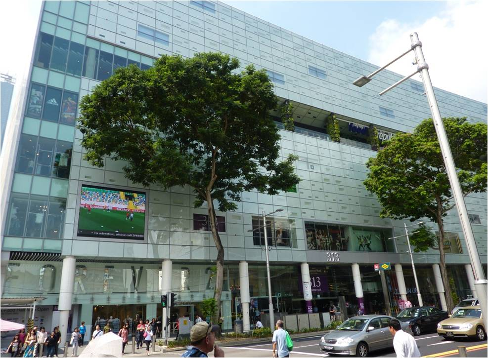 313 Orchard Road Singapore/Dundrum Town Centre